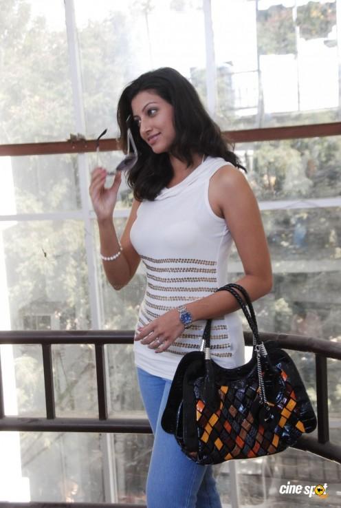 Hamsa Nandini (Malayalam TV Anchor )Sleevless dress hot s*xy Photos,,pics Gallery Image 15