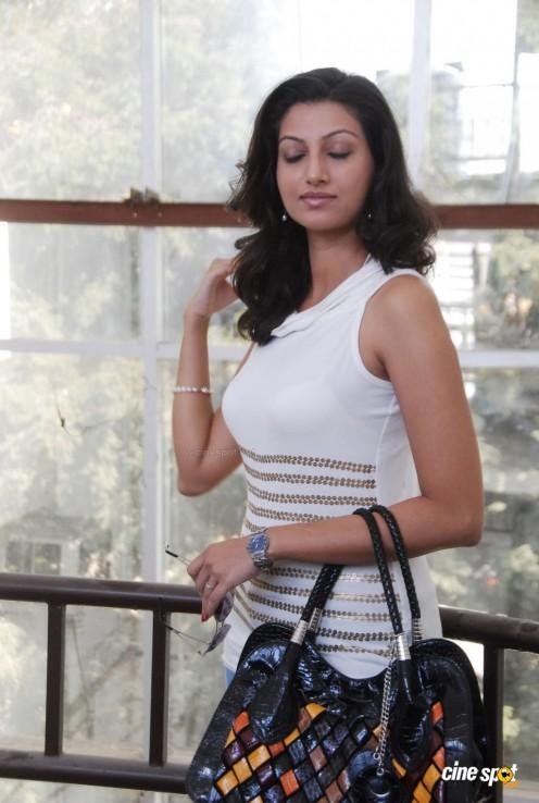 Hamsa Nandini (Malayalam TV Anchor )Sleevless dress hot s*xy Photos,,pics Gallery Image 16