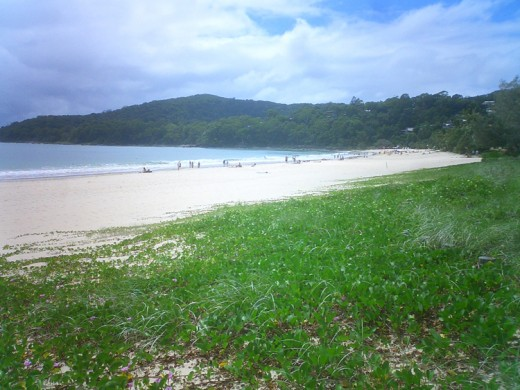 Located on the Sunshine Coast is the idyllic Noosa Beach