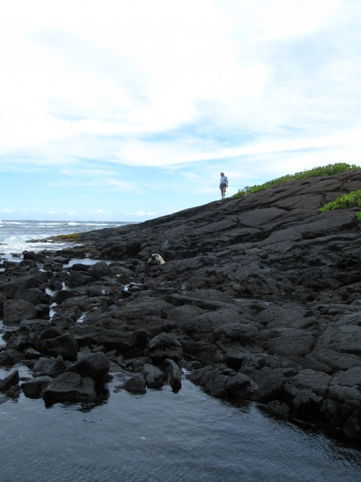 Black Lava rock at north end of the small Punalu'u Bay