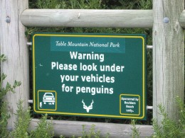 Penguin warning sign at Boulders Beach South Africa