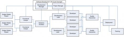 Figure 1. Roles Within the Development Community, (2006) Source http://www.developer.com