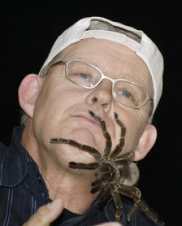 A Goliath Tarantula explores the face of Ruud Kleinpaste of Animal Planet. If you wuz a tarantula, wouldn't you just have to give one of those ears a nip?    photo dailyherald.com