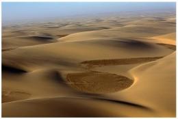 The Namibian Desert