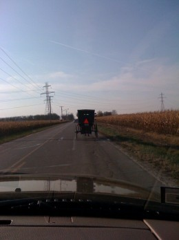 The famous Amish buggy.