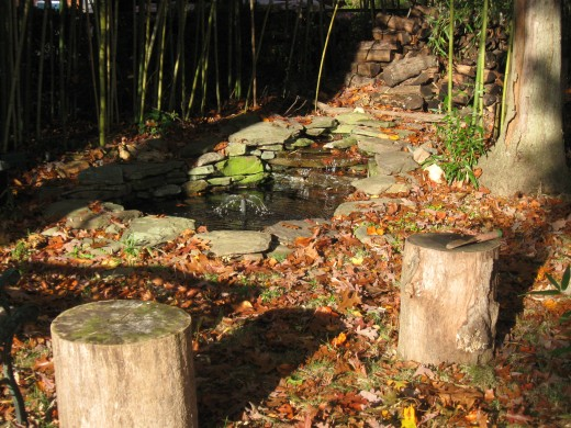 The pond surrounded by bamboo and oak trees, the seats are just the right height to sit and drum.
