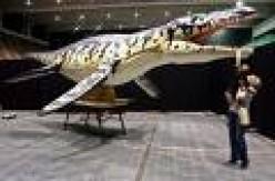 Liopleurodon      fraan.wordpress.com photo