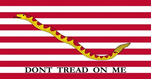 US Naval Jack, an early flag of the state.