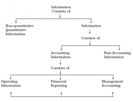 the role of accountants in todays business organizations accounting essay The changing role of accountants in the 21st century a number of reports by academicians and practitioners all over the world have called significant change in the accounting methods and research home / business / the changing role of accountants in the 21st century.