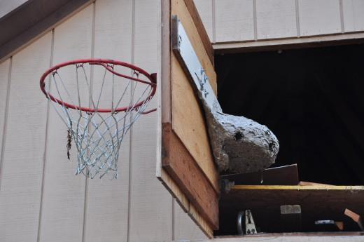Surprise: Behind door number one and the basketball hoop is a bald-faced hornets nest. Lucky I didn't shoot many hoops this summer.
