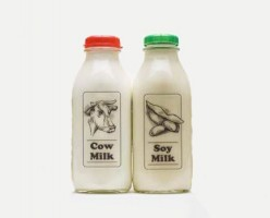 Is Soy Milk Better Than Milk From A Cow?