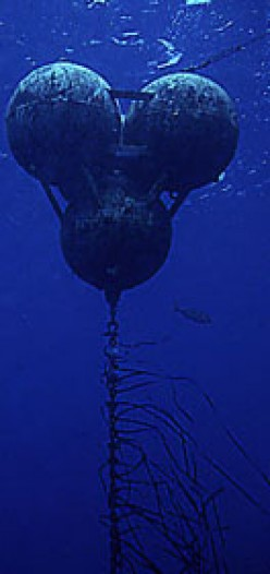 Under water FAD buoy.  Usually 40-100 feet below the surface.