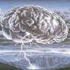 Brainstormer profile image