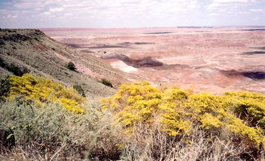 More Painted Desert scenery
