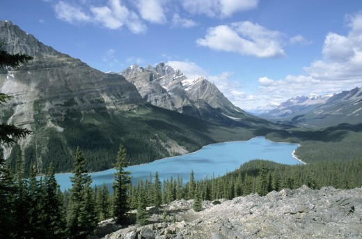 Peyto Lake in the Rockies.