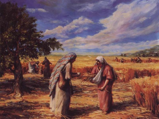 Ruth gleaning in the fields.  Image credit: http://www.oneil.com.au/lds/pictures/ruth.jpg