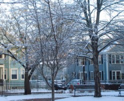 The First Snow - Brookline, Massachusetts, 2009