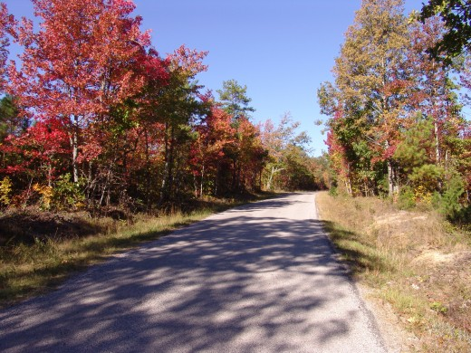 October 2009 Calendar Photo