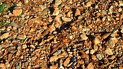 Varied stone soils in the Jonquieres, one Languedoc wine-producing region