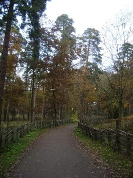Nature trail at Gamla Linkoping for a relaxing walk
