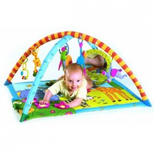 Tiny Love Gymini baby gym mat
