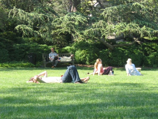 Locals and visitors enjoy a sunny day on Bishop's Lawn at the National Cathedral