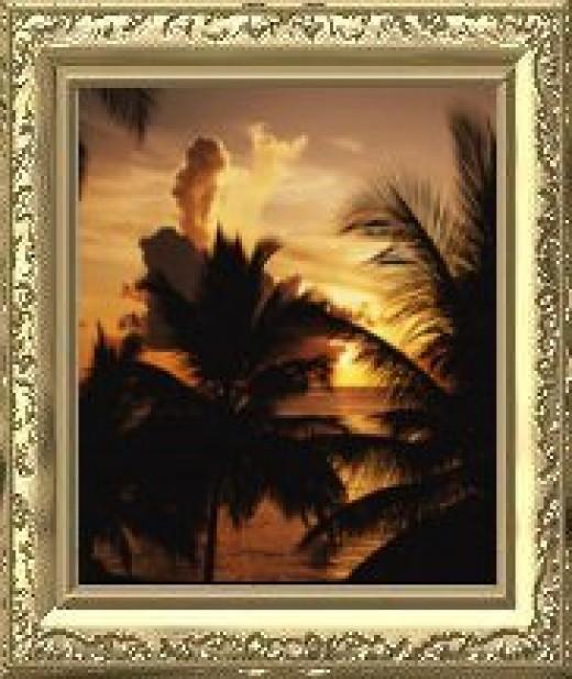 Orlando Florida Sunsets