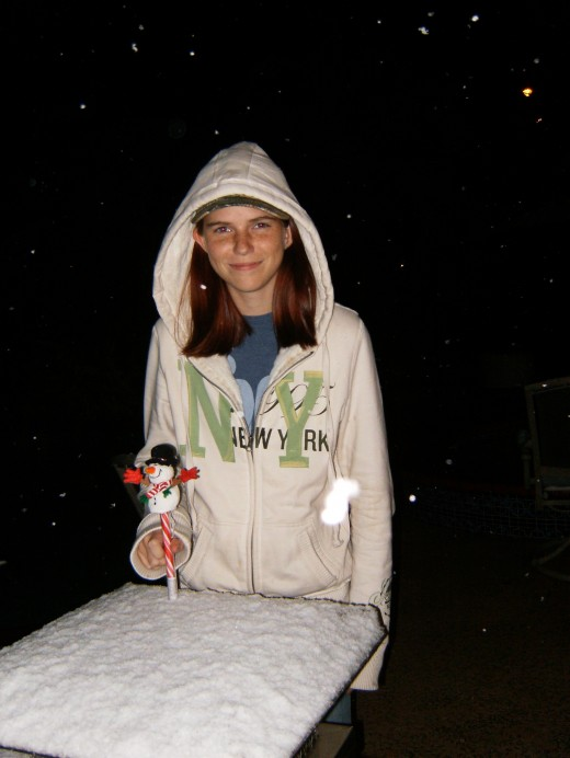 Snow in Houston in 2008