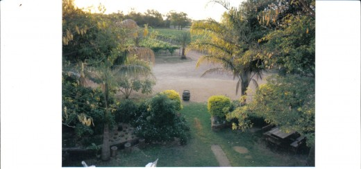 Overview of Part of the Gardens