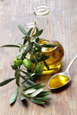 Olive Leaf Extract - The Facts