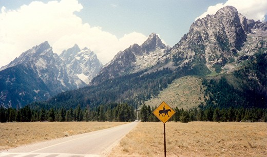 Many horseback riders are seen riding in the Tetons.