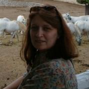 Deborah Donados profile image