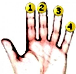Left hand finger numbers
