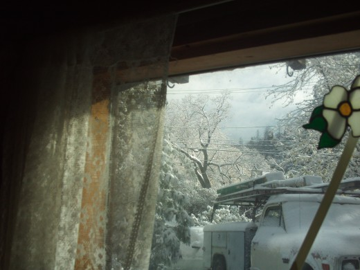 Looking out at the snow filled morning.