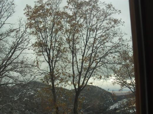 Looking at at a winter wonderland.