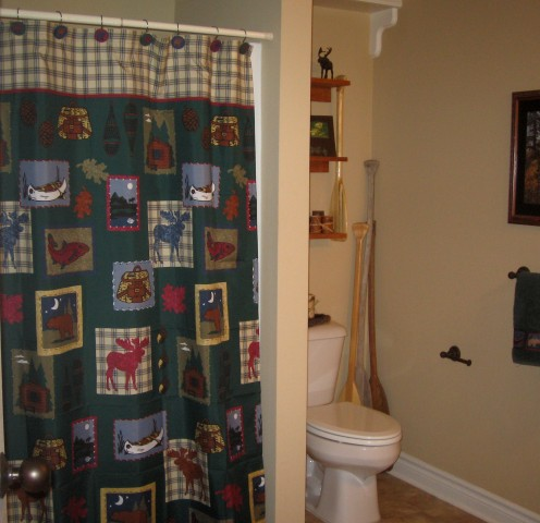Shower curtain to add color.