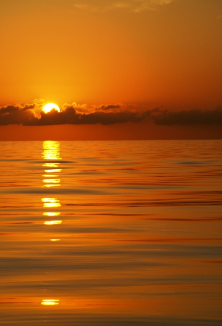 Sunrise on an oily sea, eighty miles out, halfway between Muertos Bay and Mazatlan - Sea of Cortez