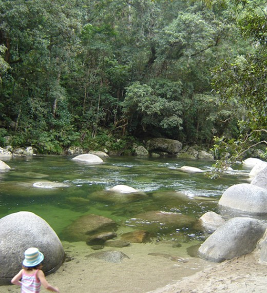 Enjoy the cool of Daintree rainforest in the Mossman Gorge