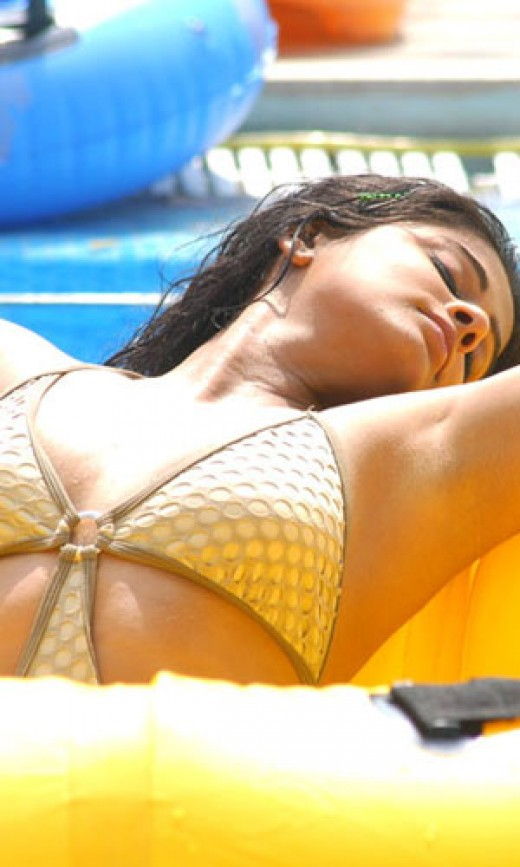 malayalam actress priyamani