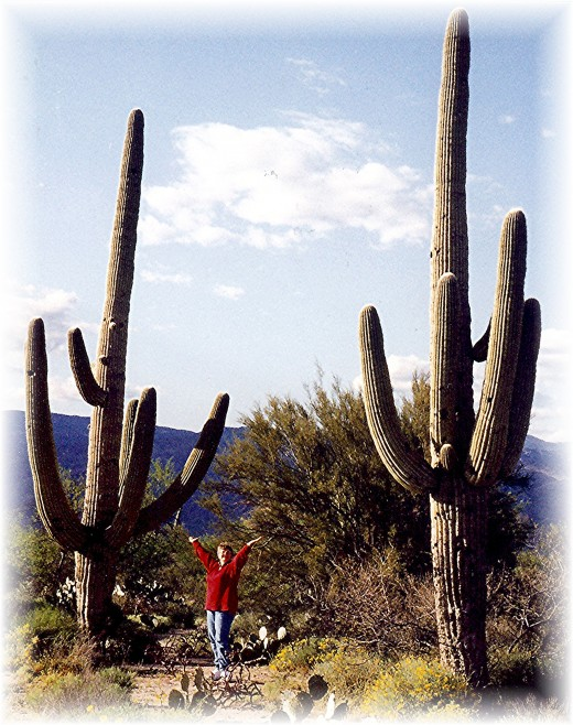 There I am with 2 giant saguaros
