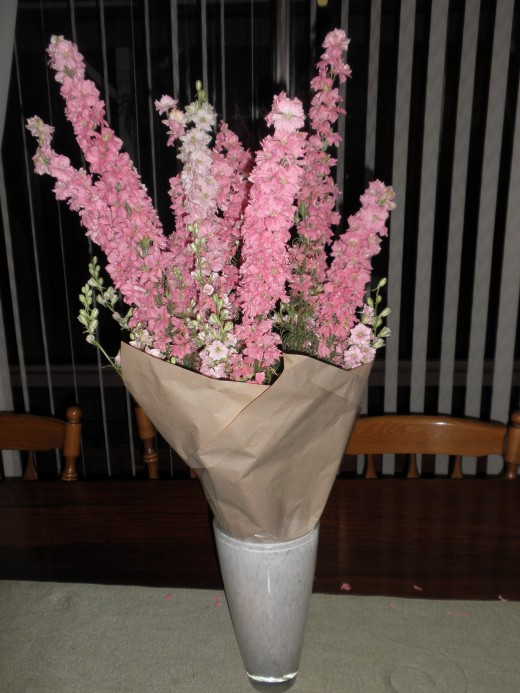 Secondly, it commonly needs the support of images from the past, flowers from Australian Christmas tree