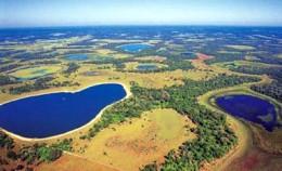 Pantanal Swamp