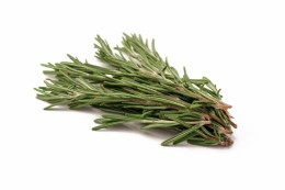 Rosemary is used as a culinary herb  and as a Medicinal Herb as well as this. It is also nice to put as a flavouring on lamb