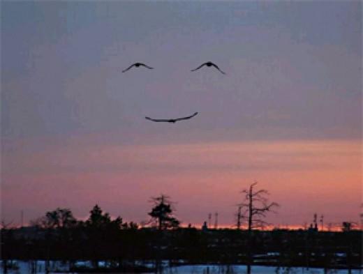 Smiles in the Sky