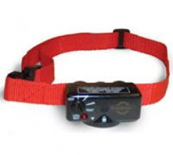 How Does a Bark Collar Stop a Dog Barking