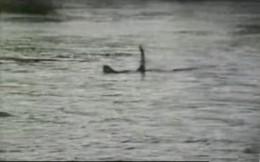Ogopogo photo by Ken Chaplin, 1989