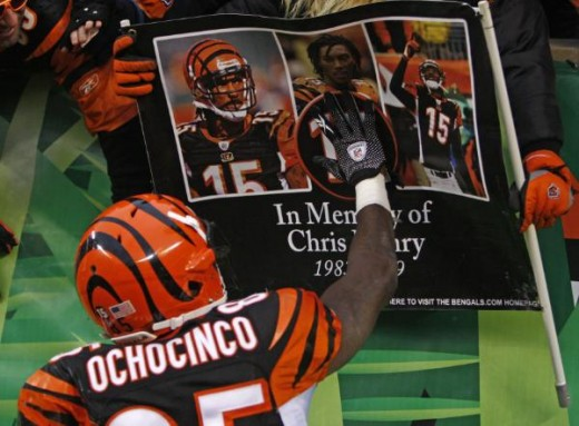 Cincinnati took over at its 2-yard line with 9:21 to go and put together its longest drive of the season. On the 14th play, Palmer threw a 6-yard touchdown pass to Chad Ochocinco (AP Photo)