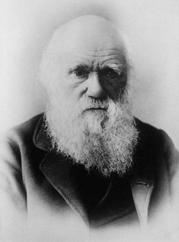 Darwin near the end of his life