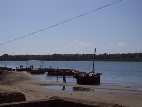 Pangani fishing boats