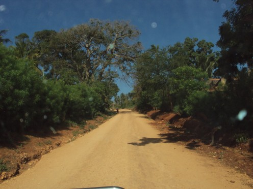 The shortcut from Pangani to Muheza